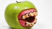 GMO apples approved despite fierce opposition ...