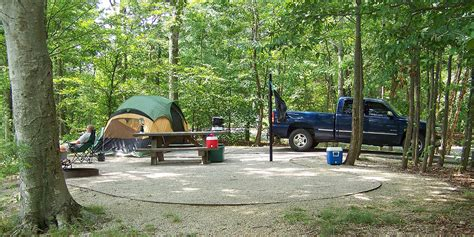 There are more than 200 sites spread out over 10 loops under a dense forest of mixed conifer and deciduous trees. Camping & Recreation - Morehead Tourism