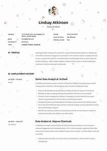 Data Analyst Resume  U0026 Writing Guide In 2020
