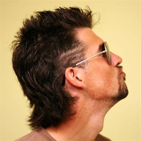 Get Mullet Hairstyle Long Background
