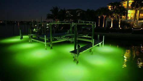 oceanscapes orlando landscape lighting orlando outdoor