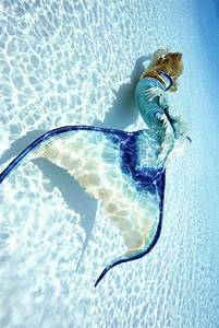 15 Photos of a Real-Life Mermaid You Have to See to ...