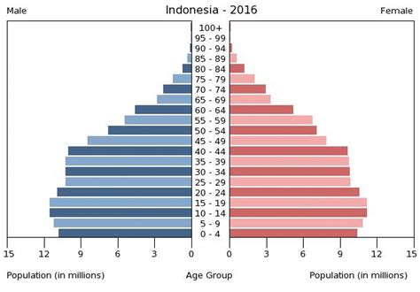 indonesia age structure demographics