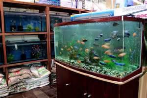 local fish and aquarium stores in ca fishstoresnearme