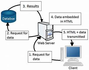 Introduction To  Net