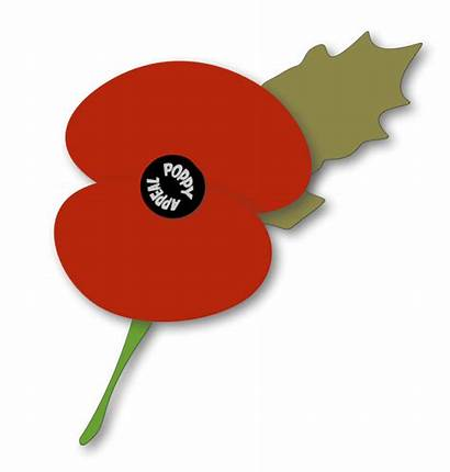 Poppy Remembrance Clipart Template Draw Flower Clip