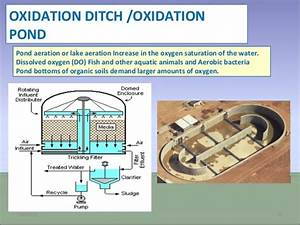 What Is The Difference Between An Oxidation Pond  Oxidation Lagoon  And An Oxidation Ditch In