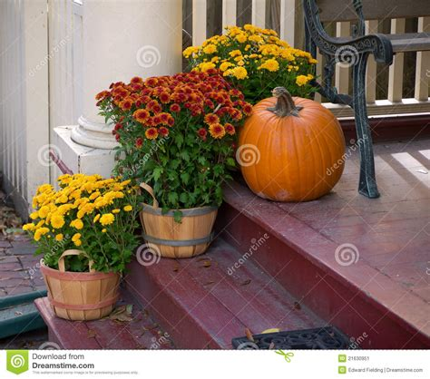 front porch fall flowers stock image image  luxury