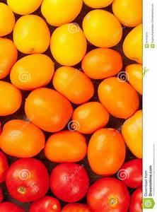 Tomaten Blätter Gelb : bunte tomaten gelb orange und rot stockfoto bild von di t bauernhof 61413270 ~ Frokenaadalensverden.com Haus und Dekorationen