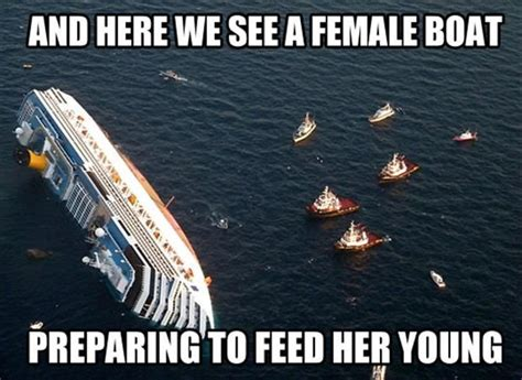 Boat Memes - and here we see a female boat preparing to feed her young funny general pinterest funny