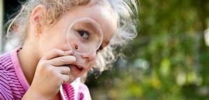 Kindergeburtstagsspiele 3 Jahre : schatzsuche schnitzeljagd f r kinder im freien ~ Whattoseeinmadrid.com Haus und Dekorationen