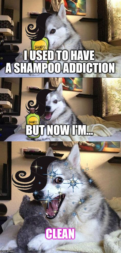 dog related puns