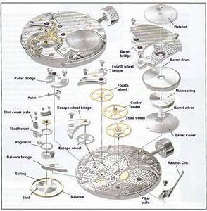Exploded View Of Watches