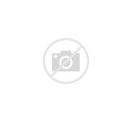 Never Give Up True Love Quotes Top 22 Quotes About Never Give Up
