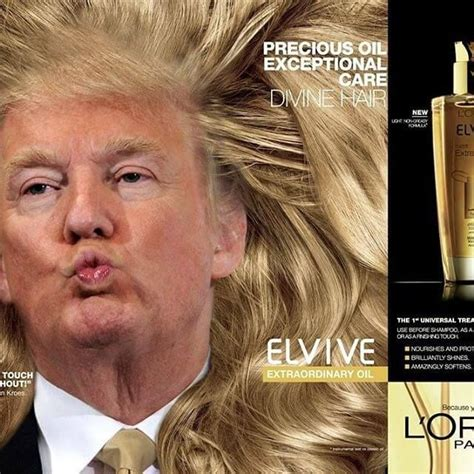 Donald Trump Hair Memes - 17 best ideas about donald trump hair meme on pinterest donald trump hair trump hair and