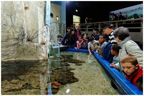 les coulisses de l aquarium
