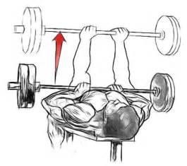 Narrow Grip Bench Press