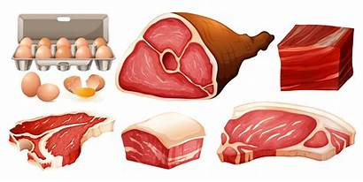 Carne Tipos Vecteezy Diferentes Meat Clipart Types