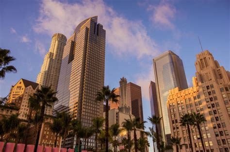 6hour Los Angeles City Tour (with Prices)  Los Angeles