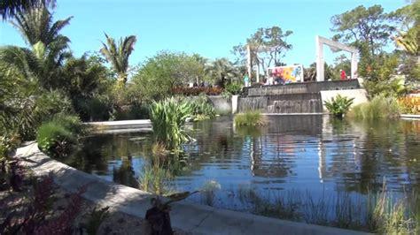 naples botanical garden naples florida youtube