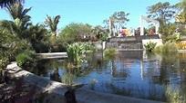 Naples Botanical Garden, Naples, FLORIDA - YouTube