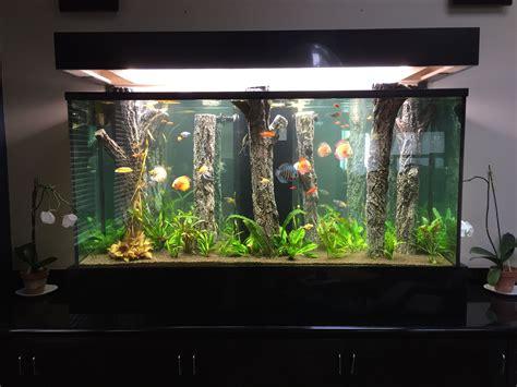 Home Aquarium Design Ideas 14 splendid diy aquarium furniture ideas to beautify your