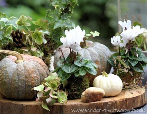 Herbst Blumen Fensterbank by Alpenveilchen Dekoration Herbst Garten