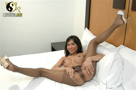 Asian Ladyboy Shows Off Ass In Stockings An Xxx Dessert Picture