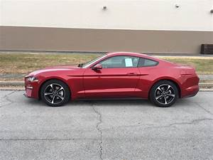 New 2020 Ford Mustang ECOBOOST COUPE 2 Door Coupe in Carbondale #2041   Vogler Ford