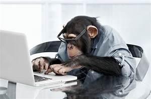 como ganar dinero on line