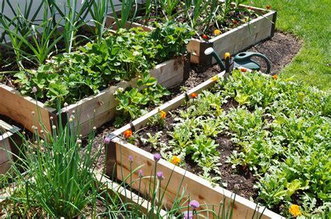 Garten Hochbeet Pflanzen by Die Top 10 Der Besten Pflanzen F 252 R Ein Hochbeet Plantura