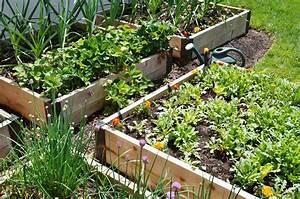 Garten Hügel Bepflanzen : die top 10 der besten pflanzen f r ein hochbeet plantura ~ Indierocktalk.com Haus und Dekorationen