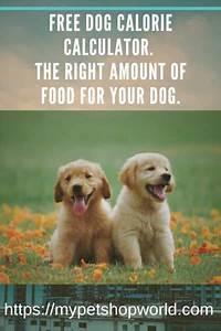 Pedigree Dog Food Feeding Chart Dog Food Calculator By Breed All You Need Infos