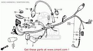 Honda Xl600r 1983  D  Usa Wire Harness    Ignition Coil