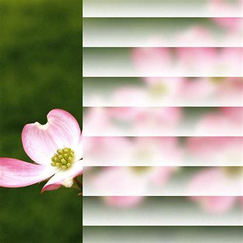 gila faux blinds glass scenes window film gila window film