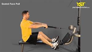 Seated Face Pull