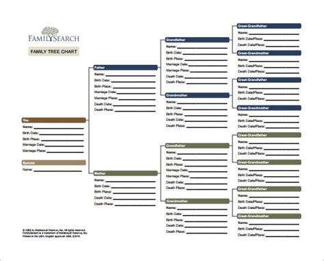 Family History Charts Templates by Family Tree Chart Template 9 Free Word Excel Pdf