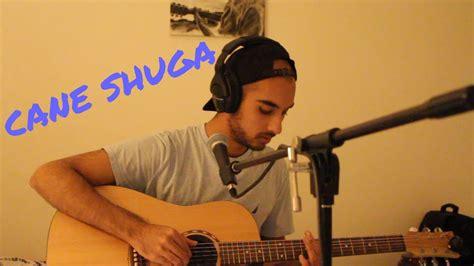 cane shuga glass animals cover chords chordify