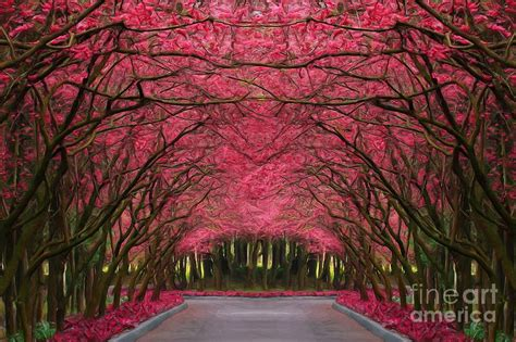 pink forest  canvas print canvas art  martin