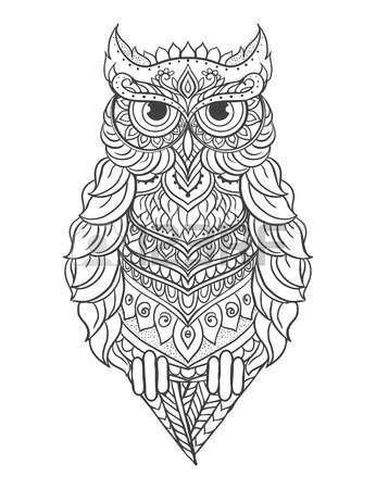Stock Vector   Owl coloring pages, Cartoon owl drawing, Owl vector
