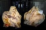 Unfinished Leonardo da Vinci Sculpture Surfaces After 500 ...