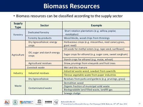 Biomass As A Renewable Energy Source