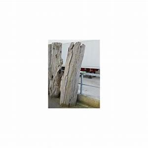 Tronc Bois Flotté : vente de tronc d coratif bois flott 170 cm ~ Dallasstarsshop.com Idées de Décoration