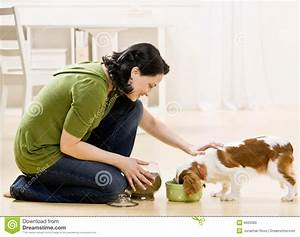 stock photo woman feeding dog image