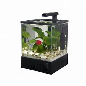 Komplett Aquarium Kaufen : aquabox led nano aquarium komplett set 22x19x29 5cm 5 5 l nano aquarien sets komplett ~ Eleganceandgraceweddings.com Haus und Dekorationen