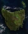 Tasmanian temperate rainforests - Wikipedia