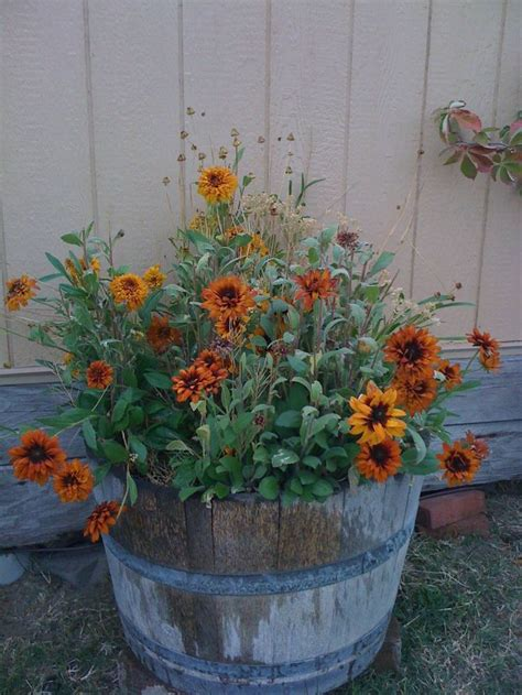 Images About Rustic Country Garden Pinterest