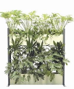 Pflanzen Luftreinigung Schlafzimmer : pflanzen als raumteiler raum trennen mit pflanzen kreativliste raumteiler raumtrenner ~ Eleganceandgraceweddings.com Haus und Dekorationen