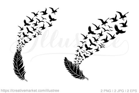 feather  flying birds vector illustrations
