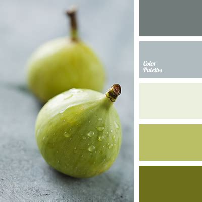 warm shades  green color palette ideas